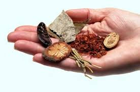Six medicinal chinese herbs held in the palm of a hand