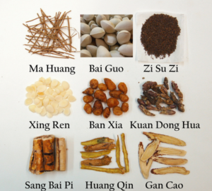 Ding Chuan Tang, Arrest Wheezing Decoction for the treatment of asthma